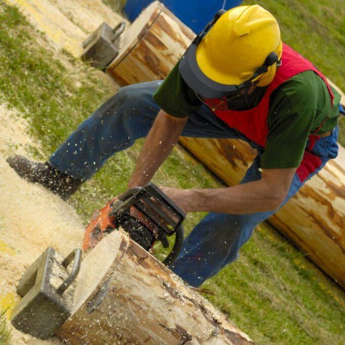man wearing hardhat cutting the tree log