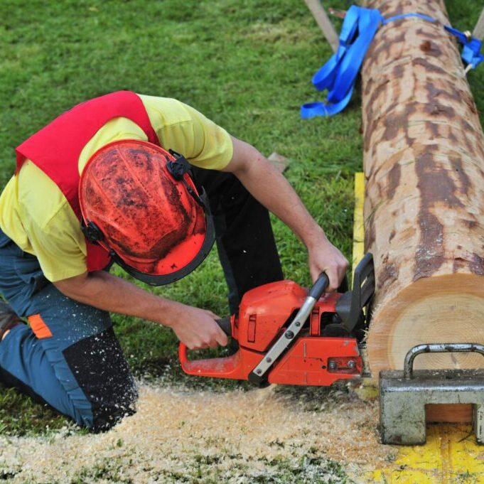 man cutting the tree log
